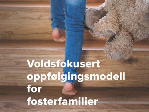 Les saken: Kurs og opplæring i VOFF-modellen